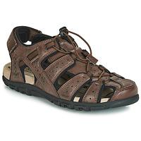 Boty Muži Sportovní sandály Geox UOMO SANDAL STRADA Hnědá