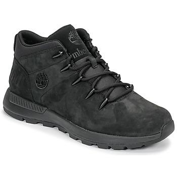 Boty Muži Kotníkové boty Timberland EURO SPRINT TREKKER Černá