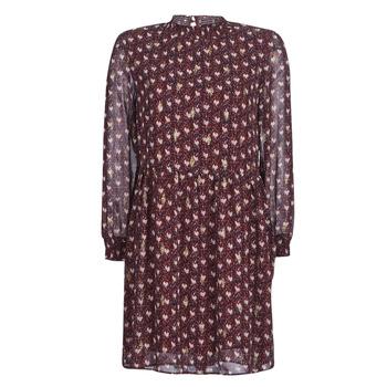 Textil Ženy Krátké šaty Betty London LILY Bordó
