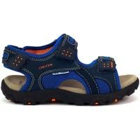 Boty Děti Sportovní sandály Geox JR Strada