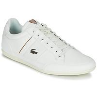 Boty Muži Nízké tenisky Lacoste CHAYMON 319 1 Bílá