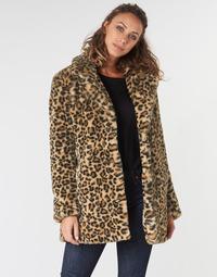 Textil Ženy Kabáty Oakwood USER Hnědá