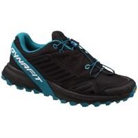 Boty Ženy Běžecké / Krosové boty Dynafit Alpine Pro W Černé,Modré