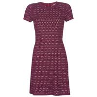 Textil Ženy Krátké šaty MICHAEL Michael Kors EMBELL FLARE MINI DRS Bordó