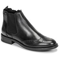 Boty Muži Kotníkové boty Carlington LEVOTO Černá