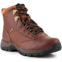 Boty Ženy Kotníkové boty Ariat Berwick lace GTX Insulated 10016298 brown