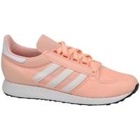 Boty Děti Nízké tenisky adidas Originals Forest Grove J Růžová
