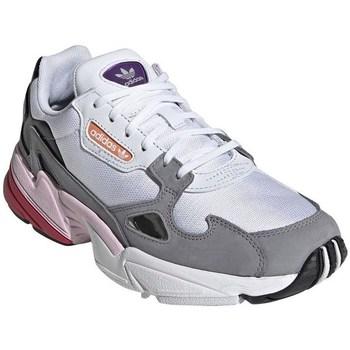 Boty Ženy Nízké tenisky adidas Originals Falcon W