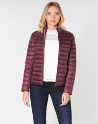 Textil Ženy Prošívané bundy JOTT CHA Lilková