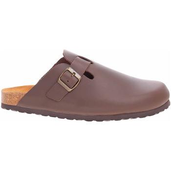 Boty Muži Pantofle Bio Life Pánské pantofle  0005.759 braun Lewis 183 Hnědá