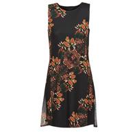 Textil Ženy Krátké šaty Desigual PAPILLON Vícebarevná