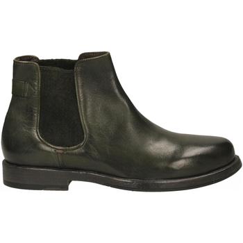 Boty Muži Kotníkové boty Calpierre BUFALIS PANT BO edera