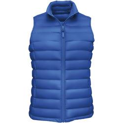 Textil Ženy Prošívané bundy Sols WILSON BW FEATHERS Azul