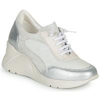 Boty Ženy Nízké tenisky Hispanitas TOKIO Bílá / Stříbřitá
