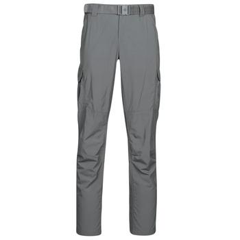 Textil Muži Cargo trousers  Columbia SILVER RIDGE II CARGO PA Šedá