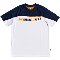 Textil Muži Trička s krátkým rukávem DC Shoes Brookledge ss Bílá