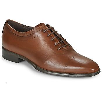 Boty Muži Šněrovací společenská obuv Carlington MINEA Zlatohnědá