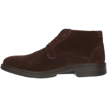 Boty Muži Kotníkové boty Luisetti 30206SE Hnědá