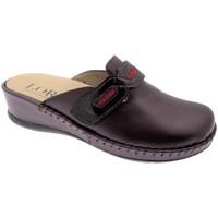 Boty Ženy Pantofle Calzaturificio Loren LOM2803bo grigio
