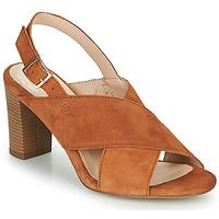 Boty Ženy Sandály Betty London MARIPOL Zlatohnědá