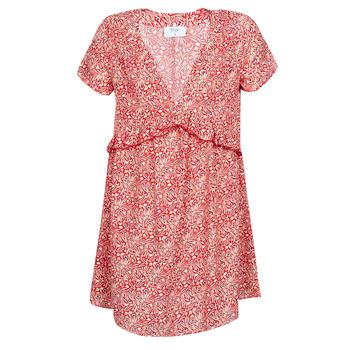 Textil Ženy Krátké šaty Betty London MARIDOUNE Červená