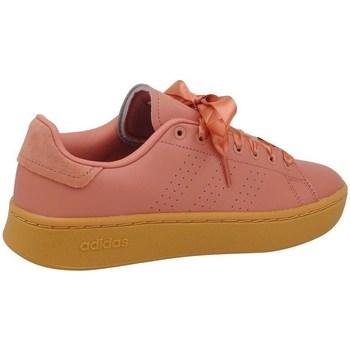 Boty Ženy Šněrovací polobotky  & Šněrovací společenská obuv adidas Originals Advantage Bold