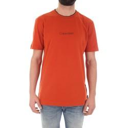 Textil Muži Trička s krátkým rukávem Calvin Klein Jeans K10K104934 Oranžová