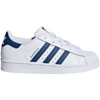 Boty Chlapecké Nízké tenisky adidas Originals Superstar C Bílé