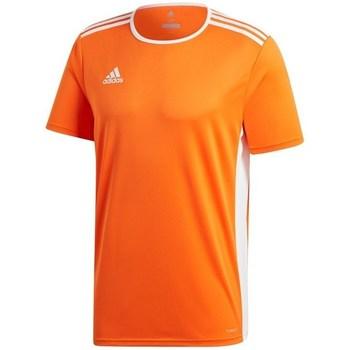 Textil Muži Trička s krátkým rukávem adidas Originals Entrada 18 Oranžová