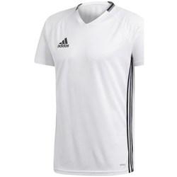 Textil Muži Trička s krátkým rukávem adidas Originals Condivo 16 Bílá