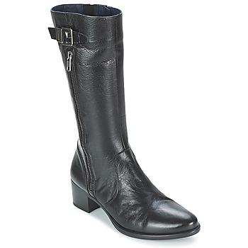Boty Ženy Kotníkové boty Dorking LOLETA Černá