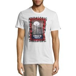 Textil Muži Trička s krátkým rukávem adidas Originals Originals Graphic Streetball Bílé