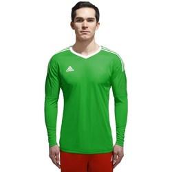Textil Muži Trička s dlouhými rukávy adidas Originals Z Adizero Goalkeeper Zelené