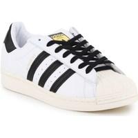 Boty Muži Nízké tenisky adidas Originals Superstar Laceless Bílé,Černé