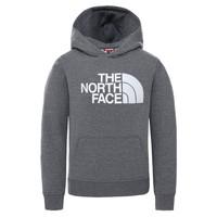 Textil Děti Mikiny The North Face DREW PEAK HOODIE Šedá