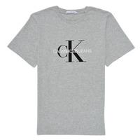 Textil Děti Trička s krátkým rukávem Calvin Klein Jeans MONOGRAM Šedá