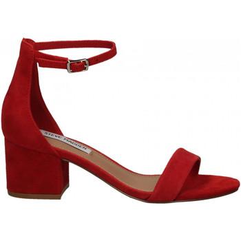 Boty Ženy Sandály Steve Madden IRENEE SUEDE red