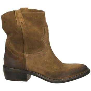 Boty Ženy Kotníkové boty Ton Gout VELOUR bosco-bosco