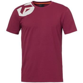 Textil Chlapecké Trička s krátkým rukávem Kempa T-shirt  Core 2.0 rouge