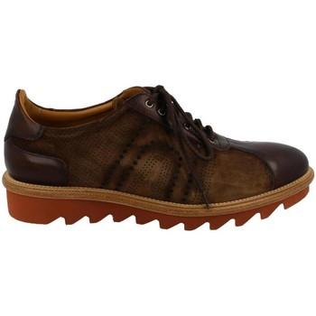 Boty Muži Šněrovací polobotky  & Šněrovací společenská obuv Calce  Marrón
