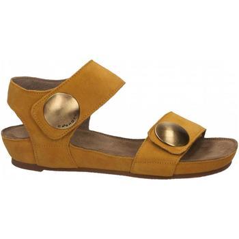 Boty Ženy Sandály Ca Shott SUEDE sole