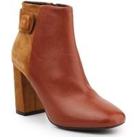 Boty Ženy Kotníkové boty Geox D Audalies H C D643XC-04322-C6N2D brown