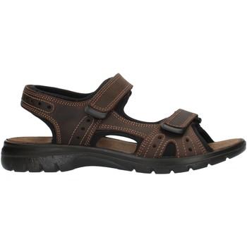 Boty Muži Sportovní sandály Imac 503370 Hnědá