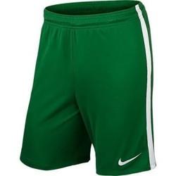 Textil Muži Kraťasy / Bermudy Nike League Knit Zelené