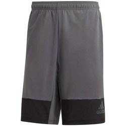 Textil Muži Tříčtvrteční kalhoty adidas Originals 4 Krft X Lwv Šedé