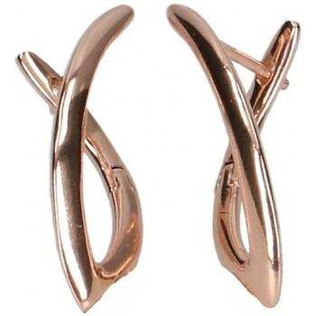 Hodinky & Bižuterie Ženy Náušnice Luna Collection 45079 Zlatá