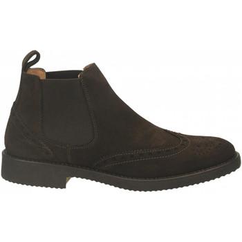 Boty Muži Kotníkové boty Antica Cuoieria VELOUR testa-di-moro