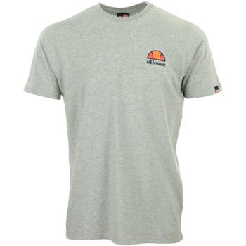 Textil Muži Trička s krátkým rukávem Ellesse Canaletto T-Shirt Šedá