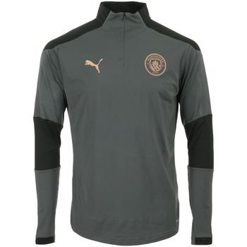 Textil Muži Teplákové bundy Puma Manchester City 1/4 Zip Top Šedá