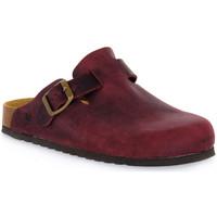 Boty Pantofle Bioline VINO INGRASSATO Rosso